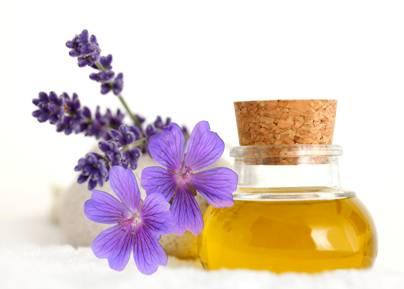Tinh dầu phong lữ – Geranium Essential Oil