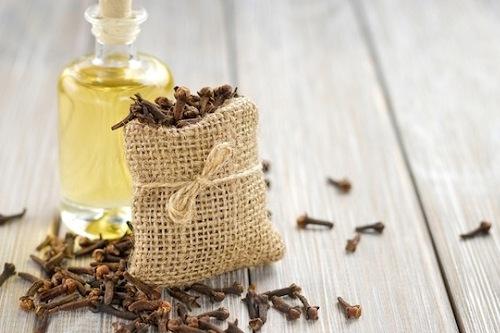 Tinh dầu nụ đinh hương – Clover Essential Oil