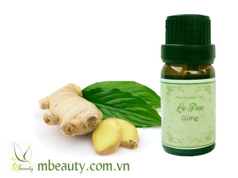 Tinh dầu gừng nguyên chất – Ginger Essential Oil